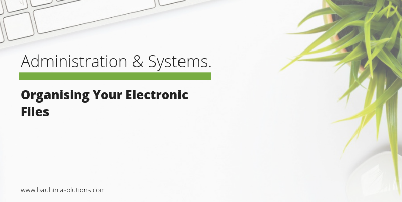 Organising Your Electronic Files